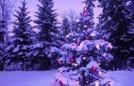 اس ام اس و پیامک تبریک کریسمس